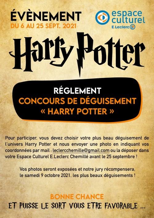 HARRY-POTTER-Concours-déguisement-2